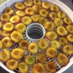 Plums in drier