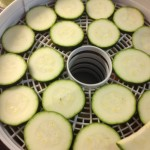 Courgette in drier