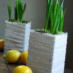 milk_carton_planter
