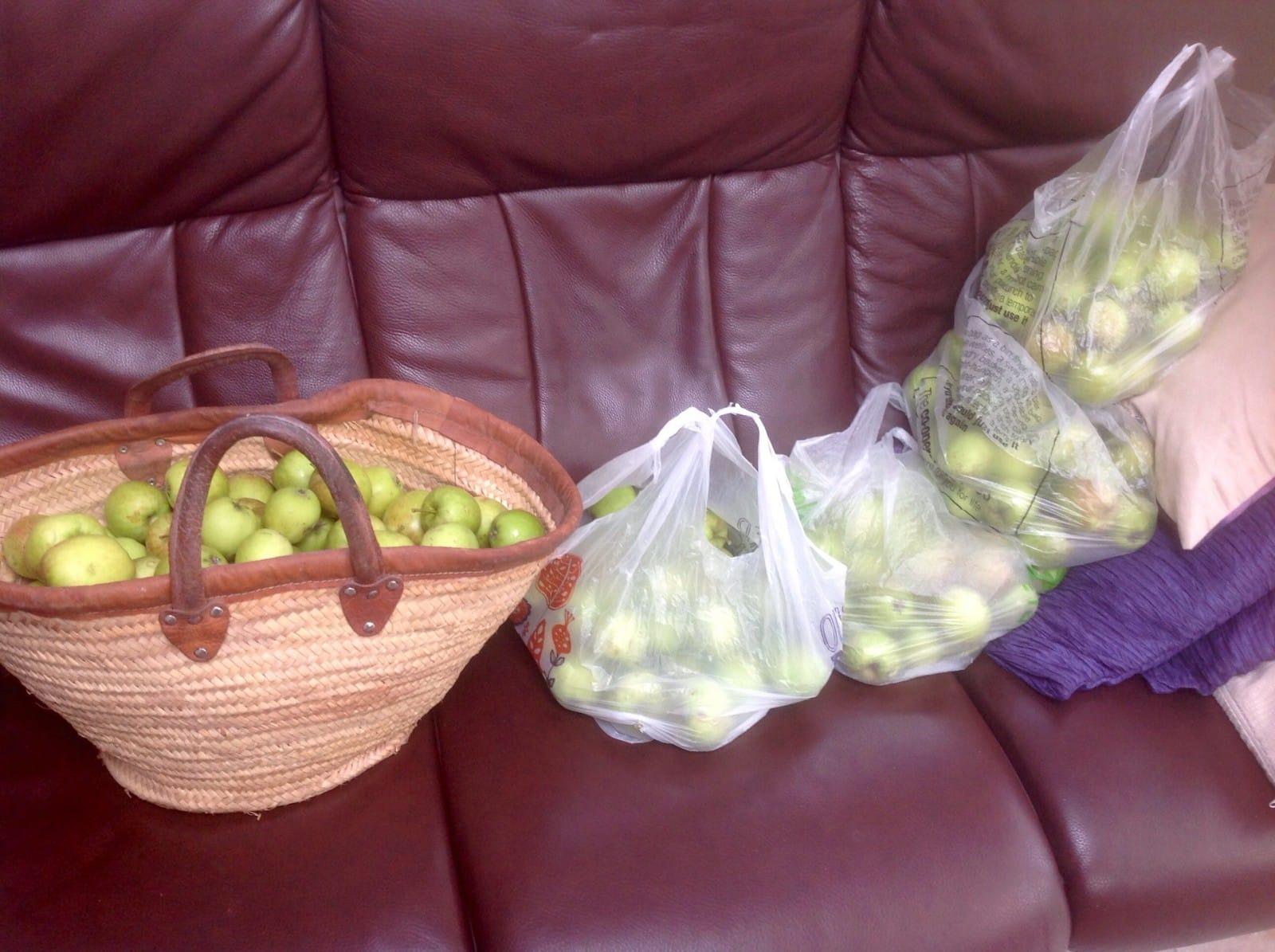 Fiesta apples