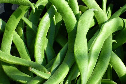5 things to save money in the garden - runner beans