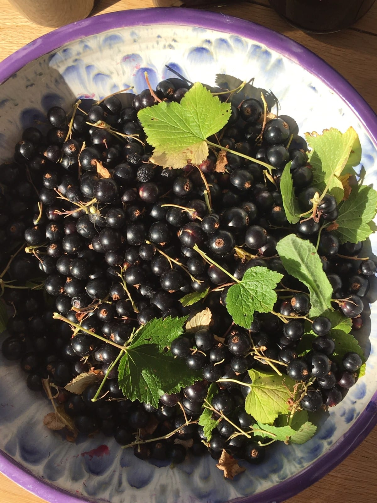 home grown blackcurrants