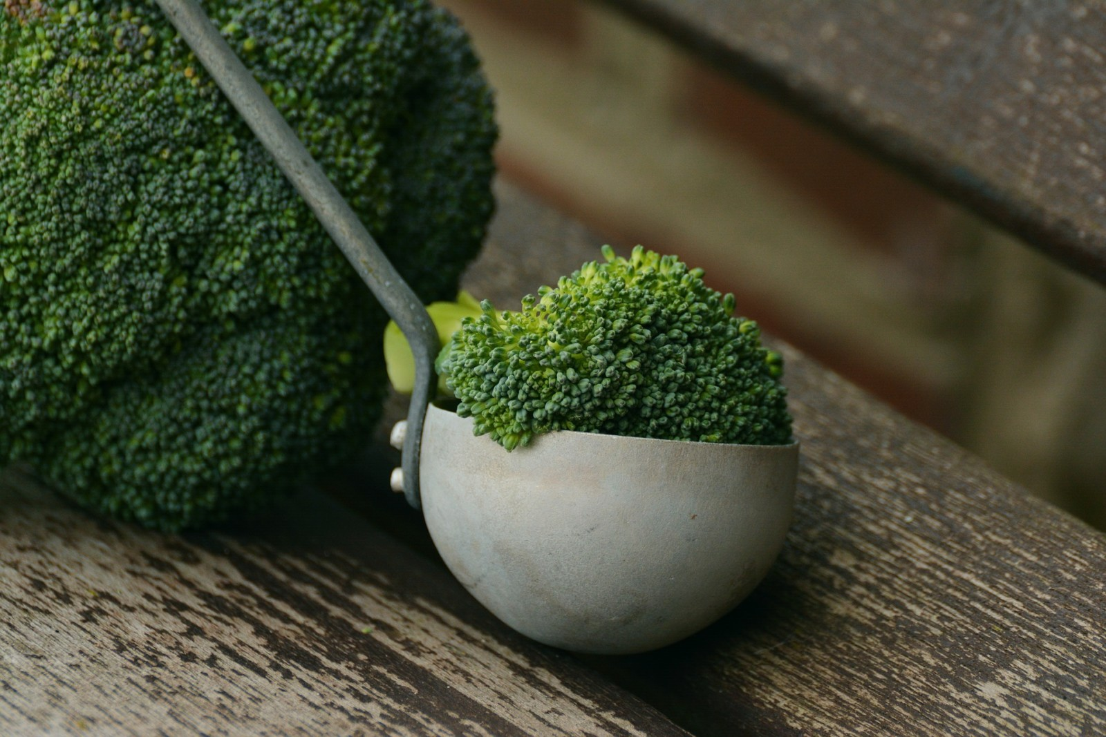 broccoli - how to make soup