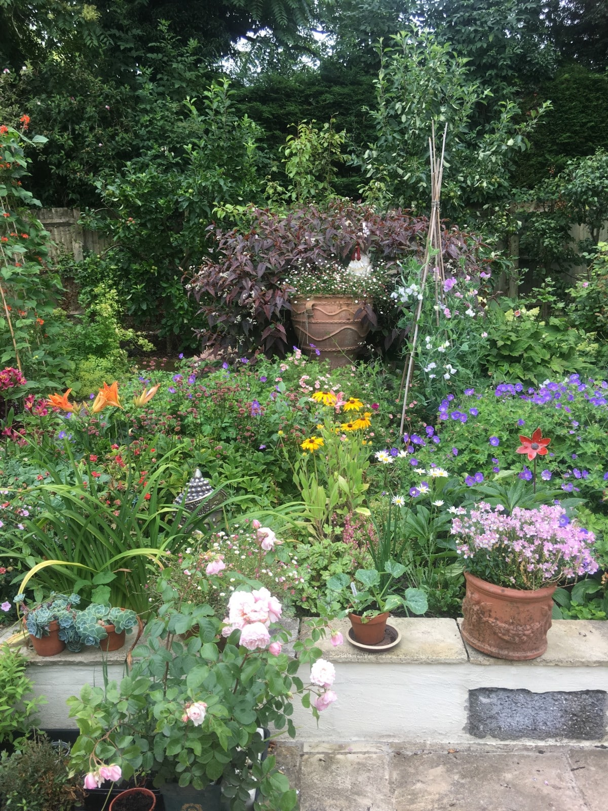 the garden in July