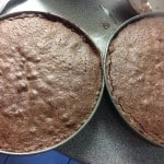 The oil and eggs cake after baking. This is a soft, tender cake.